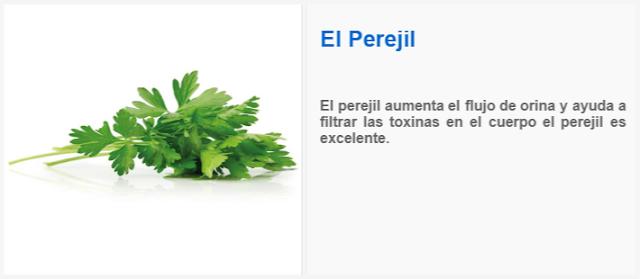 El perejil aumenta el flujo de orina y ayuda a filtrar las toxinas en el cuerpo el perejil es excelente.