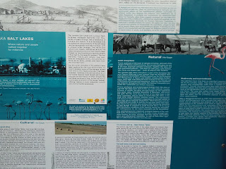 English poster about Larnaka Salt Lake and the flamingoes