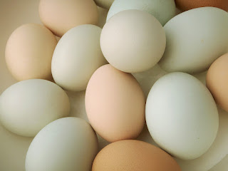 eggs for immunity