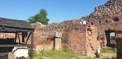 Ruiny zamku Krzyżackiego w Toruniu.