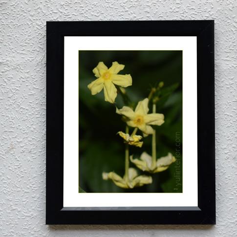 Beautiful Flowers Framed Print, Wall Frame, Wall Art in Port Harcourt, Nigeria