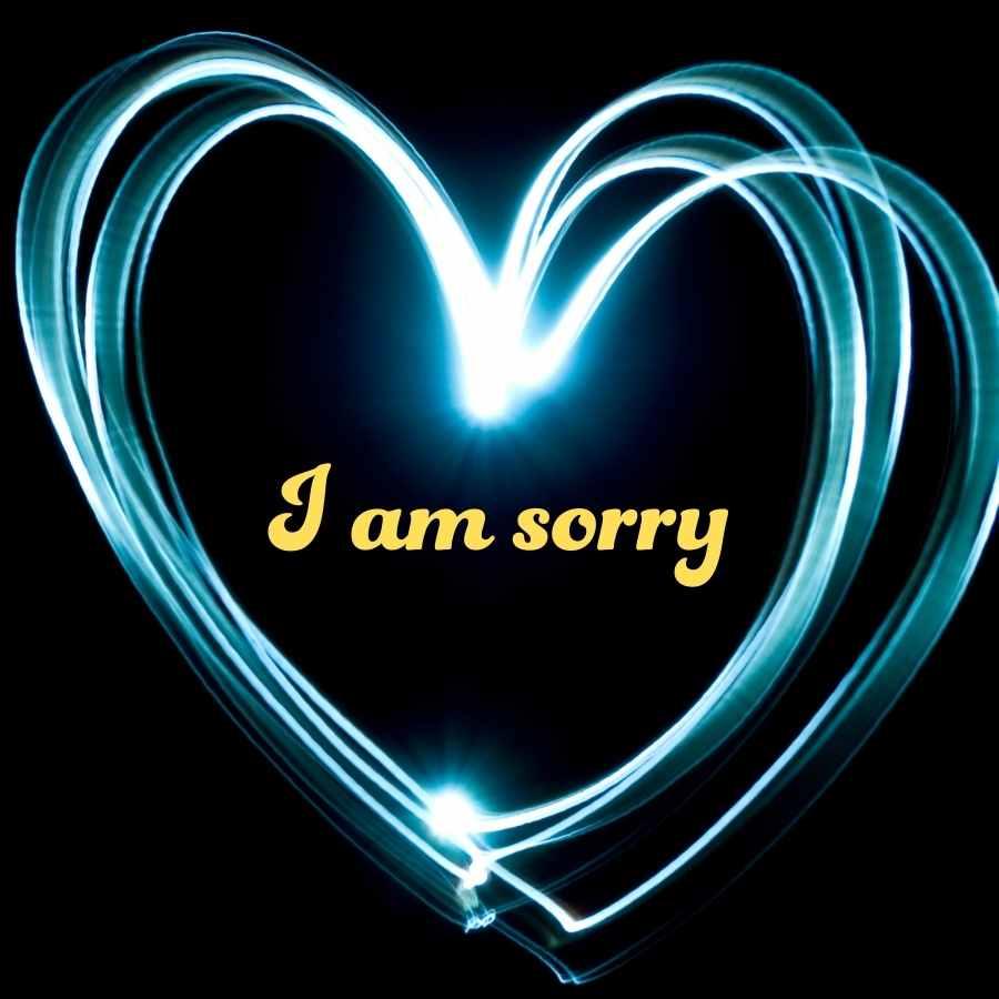 i am very sorry photo