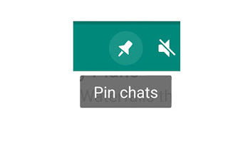 pin chat in whatsapp android app whatsapp pinned chat update