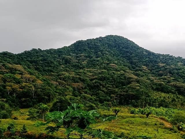 Prefeitura e UNISEPE firmam parceria para expansão de projetos ambientais