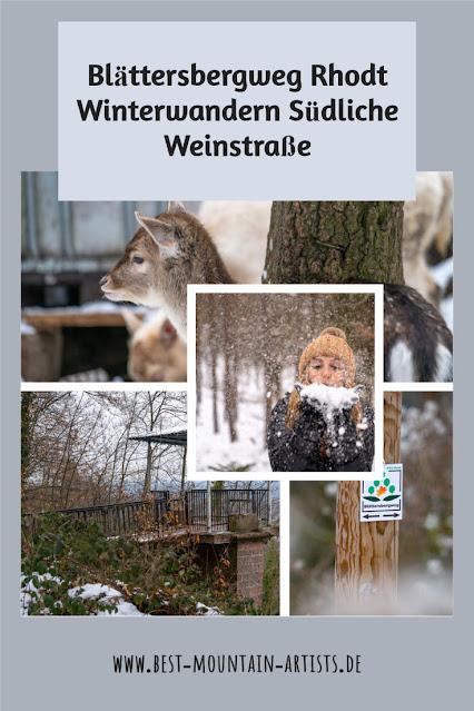 Blättersbergweg Rhodt  Winterwandern Südliche Weinstraße  Rietburg - Villa Ludwigshöhe - Edenkoben 40