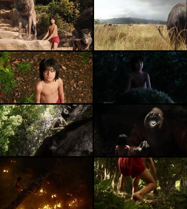 The Jungle Book 2016 Dual Audio ORG Hindi 720p BluRay