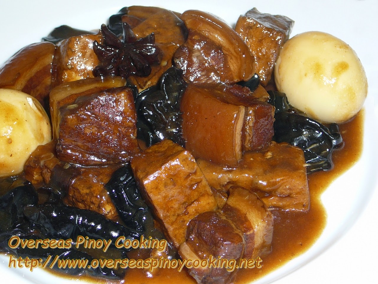 Braised Pork and Tofu