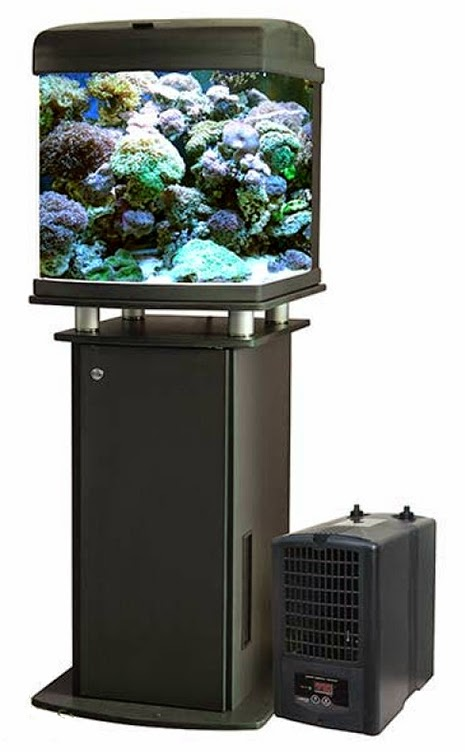 How to Set Up an Aquarium Chiller - Marine Depot Blog