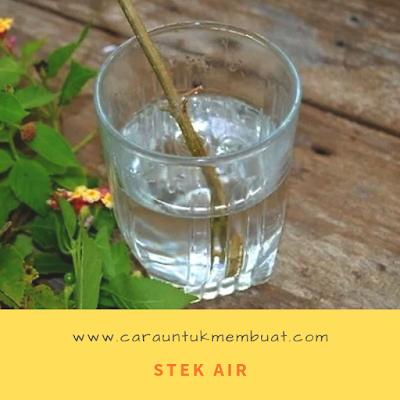 Stek Air