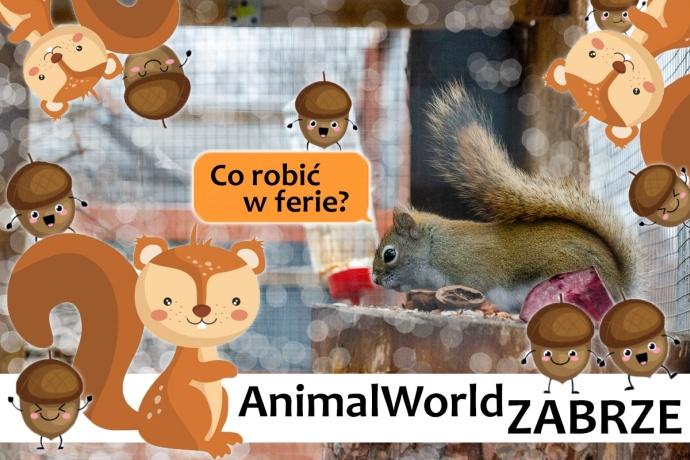 Poznajemy... AnimalWorld | Zabrze