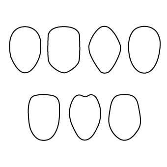 6d1b0ab0c8 Drawing Common Face Shapes for Kids