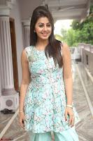 Nikki Galrani at Prema leela pelli gola trailer Launch ~  Exclusive 103.JPG