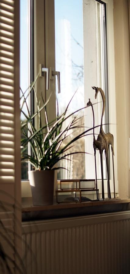 Blog + Fotografie by it's me! - weiße Fensterläden und Fensterdeko