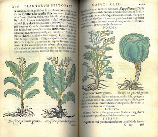 Two-page spread showing hand-colored plants