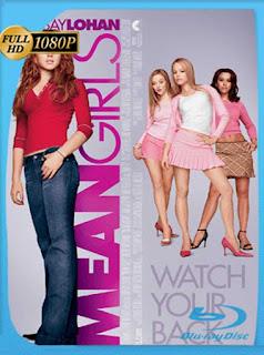 Chicas Pesadas [2004] HD [1080p] Latino [GoogleDrive] SilvestreHD