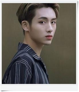 """Dong Si Cheng """"Winwin"""" WayV"""