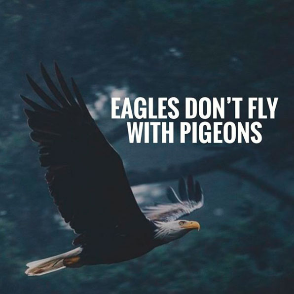 Eagles don't fly with pigeons.