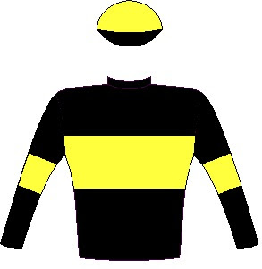 Matador Man - Silks - Owner: Messrs G D Tooch, G L Blank, G J Nassif, J Nassif, Z L Nassif, J Sarkis & R M Scott - Colours: Black, dayglo yellow hoop, armbands and cap, black peak