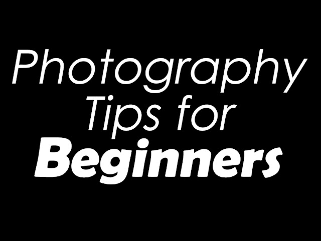 Top Photography Tips for Absolute Beginners