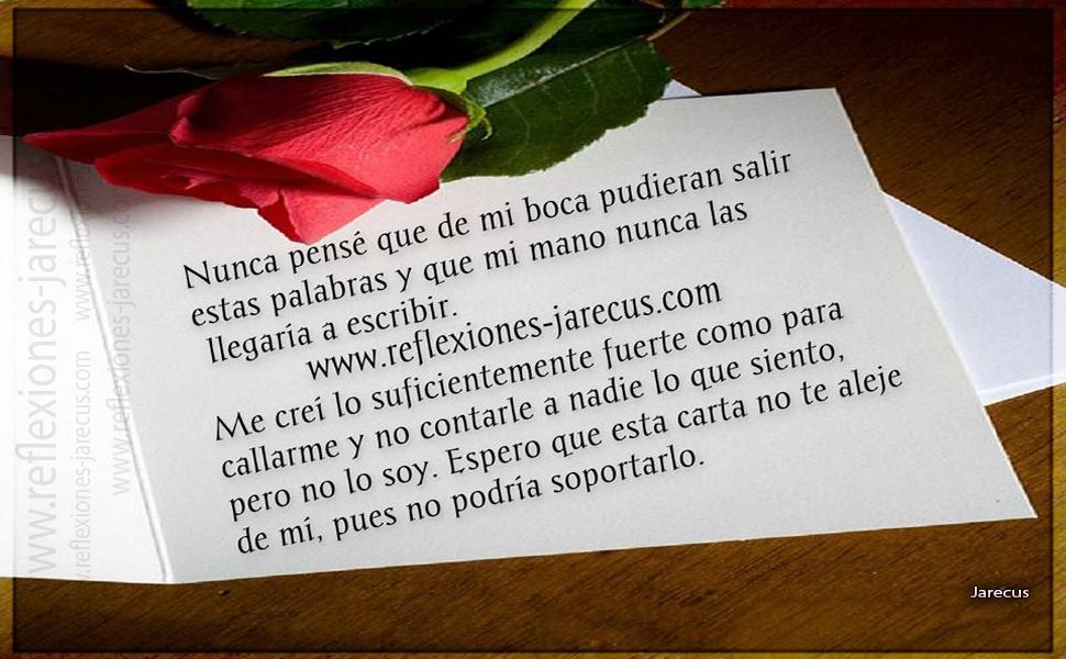 Reflexiones de amor, Carta de amor