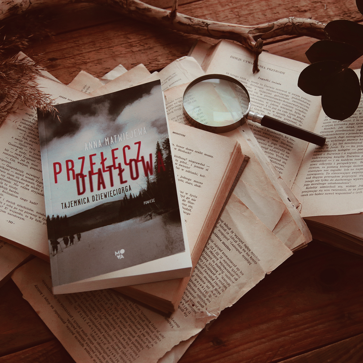 #162 Przełęcz Diatłowa. Tajemnica Dziewięciorga - Anna Matwiejewa