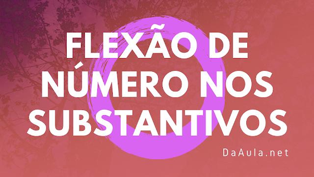 Língua Portuguesa: O que é Flexão de Número Nos Substantivos