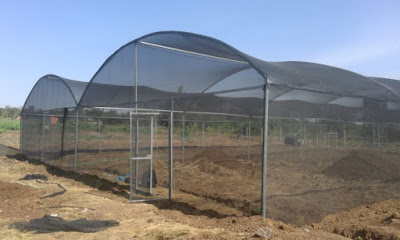 Steps on how to get our greenhouses and others services in Kenya.