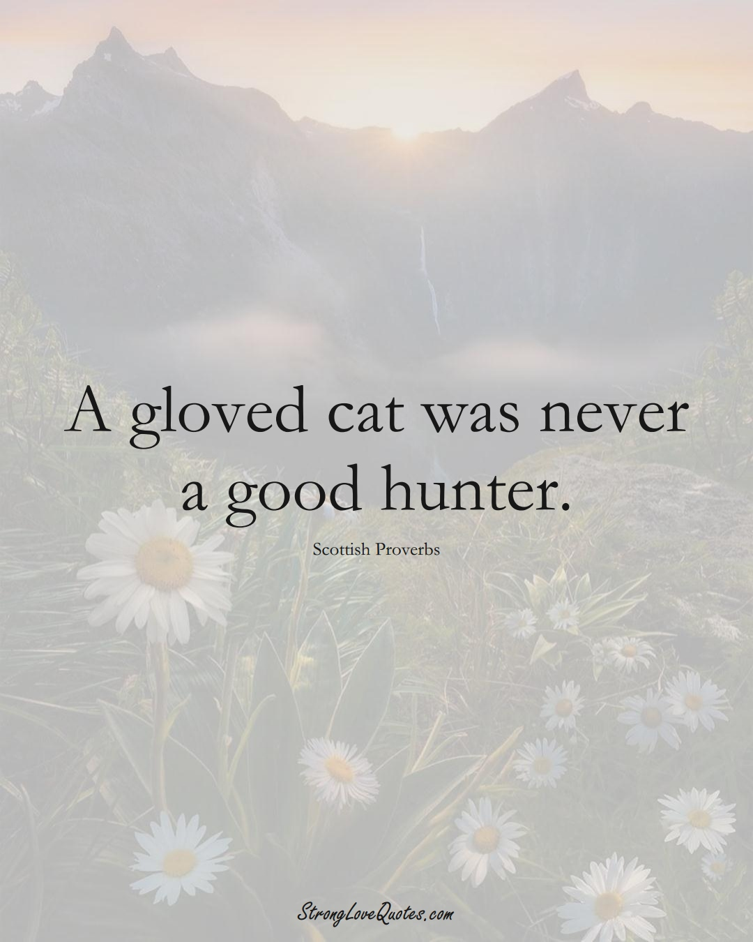 A gloved cat was never a good hunter. (Scottish Sayings);  #EuropeanSayings