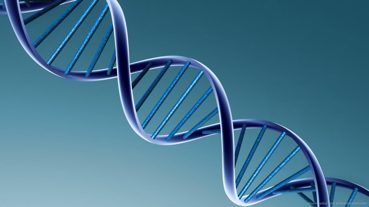 Existen Genes Que Predisponen A Enfocarnos En Puntos Negativos