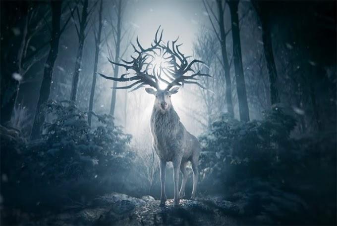 Nuevas imágenes de la adaptación de Shadow and Bone para Netflix.