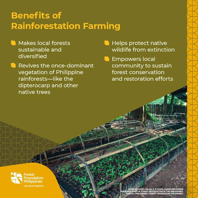 Rainforestation Farming Benefits Infographics