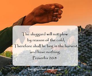 Proverbs 20:4