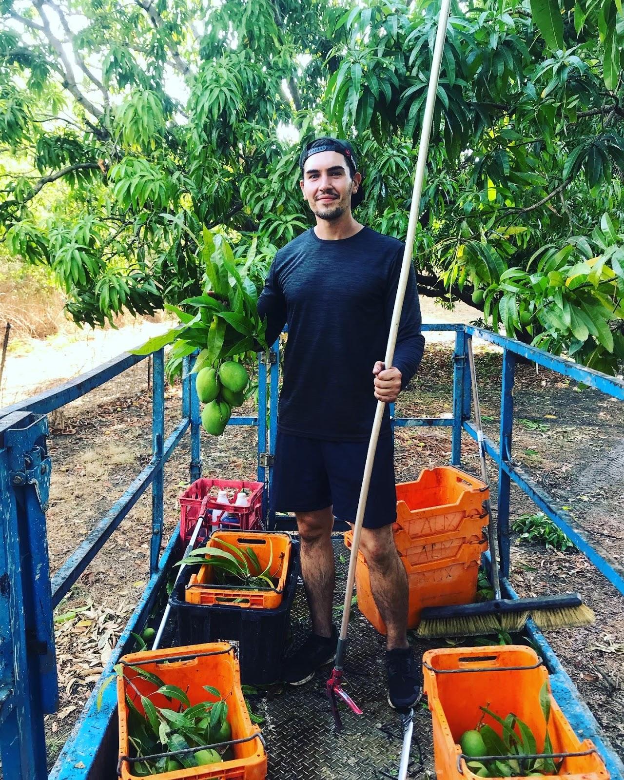 Mango Jobs Stellenangebote Bewerbung 1220