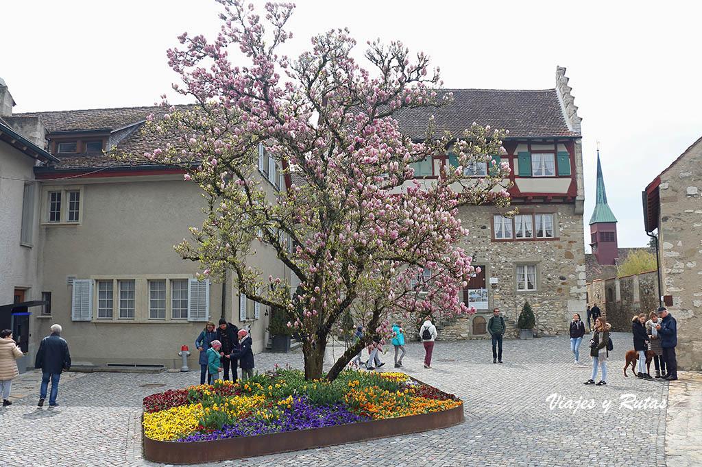 Castillo de Laufen, Cataratas del Rin, Suiza