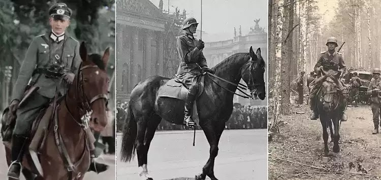 Το ιππικό της Βέρμαχτ στο Αν. Μέτωπο, 1942-45: Η άγνωστή δράση του (vid.)
