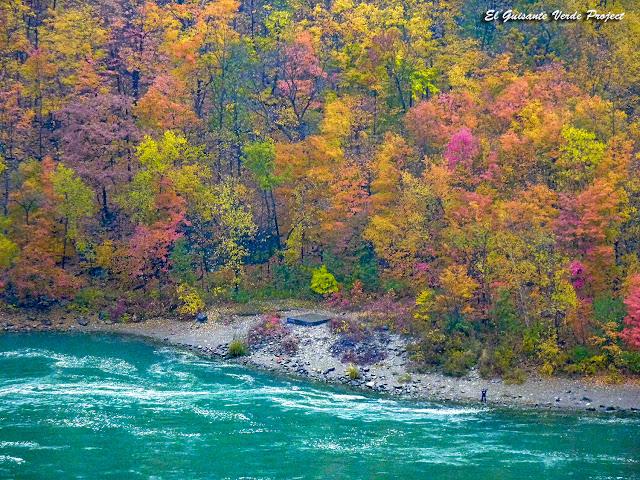 Otoño en Parque Estatal de Niagara Falls - Nuew York, Estados Unidos por El Guisante Verde Project