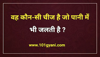 General Knowledge, gk in hindi, samanya gyan, gk mcq, interesting gk queation