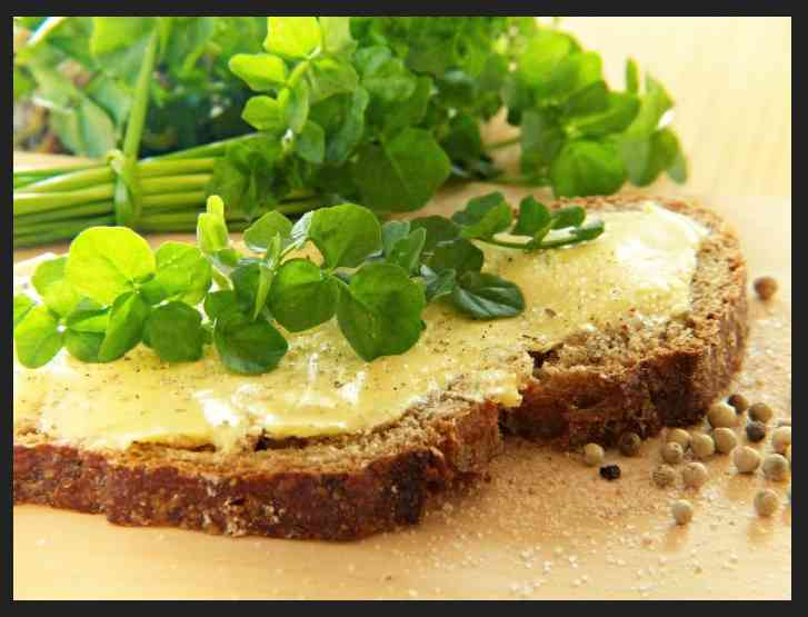 Spinach and Watercress – The Inexperienced Angels