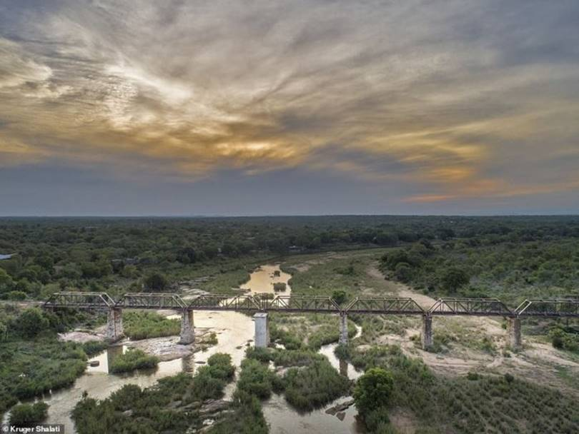 Train Wagons build this hotel is the Selati railway bridge spanning the Sabie River, South Africa. Built in 1920, Kruger National Park.