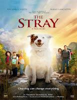 The Stray: El enviado de Dios (2017)