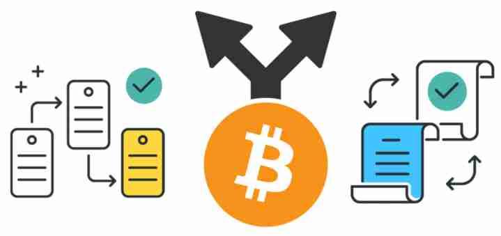 加密货币分叉:它们是什么以及为什么您要选择一个?