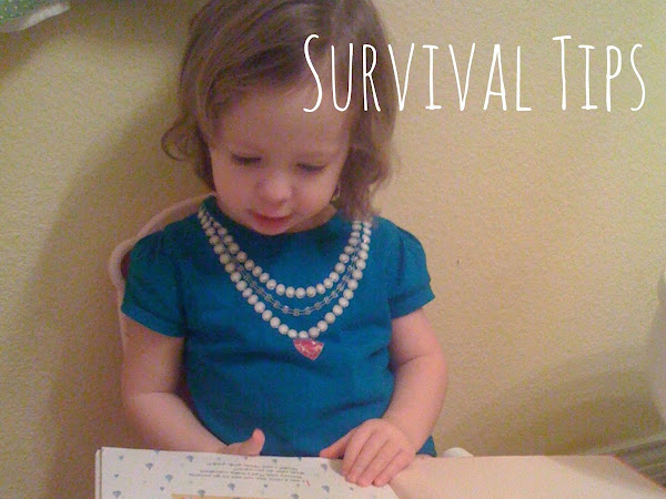Potty Training Survival Tips