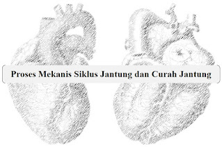 Proses Mekanis Siklus Jantung dan Curah Jantung | Pixabay.com