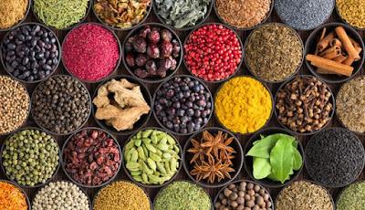 Usaha Obat Herbal