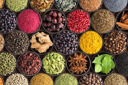 Peluang Bisnis Usaha Obat Herbal di Tengah Wabah Pandemi Covid-19