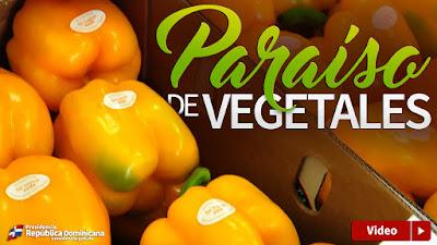 VIDEO: Paraíso de vegetales