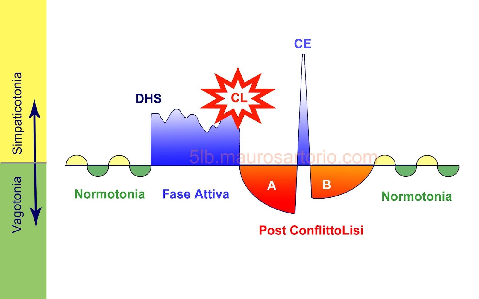 Metodo di verifica delle 5 Leggi Biologiche del dott. Hamer