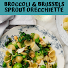 Broccoli & Brussels Sprout Orecchiette