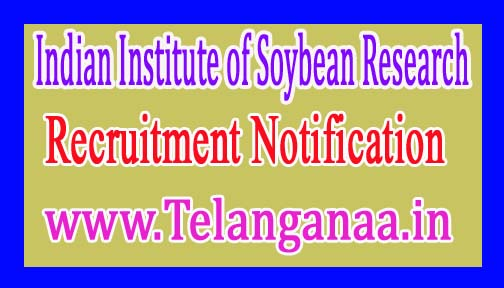 ICARIndian Institute of Soybean ResearchJob Recruitment