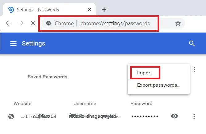 Google Chrome Password Management Option